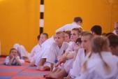 Аттестация и посвящение в каратисты в Волгоградской Федерации Киокусинкай (рис.53)