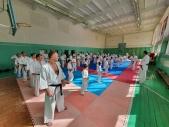 Мастер класс в Федерации Киокушинкай Волгоградской области