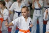 Мастер класс в Федерации Киокушинкай Волгоградской области (рис.25)