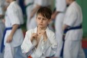 Мастер класс в Федерации Киокушинкай Волгоградской области (рис.28)