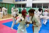 Мастер класс в Федерации Киокушинкай Волгоградской области (рис.30)