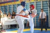 Областные соревнования по киокусинкай КУБОК ВИКТОРИЯ (рис.5)