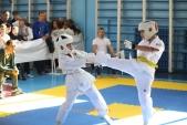 Областные соревнования по киокусинкай КУБОК ВИКТОРИЯ (рис.7)