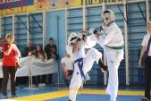 Областные соревнования по киокусинкай КУБОК ВИКТОРИЯ (рис.9)