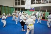 Совместная боевая тренировка в Лицее 9 (рис.10)