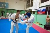 Совместная боевая тренировка в Лицее 9 (рис.13)