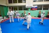 Совместная боевая тренировка в Лицее 9 (рис.15)