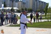 Спортивно-массовое мероприятие Волгоградской Ассоциации Киокусинкай каратэ (рис.11)