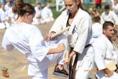 Спортивно-массовое мероприятие Волгоградской Ассоциации Киокусинкай каратэ (рис.15)