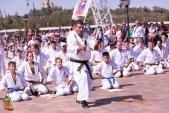 Спортивно-массовое мероприятие Волгоградской Ассоциации Киокусинкай каратэ (рис.21)