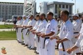 Спортивно-массовое мероприятие Волгоградской Ассоциации Киокусинкай каратэ (рис.8)
