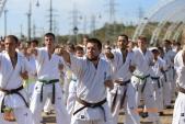 Спортивно-массовое мероприятие Волгоградской Ассоциации Киокусинкай каратэ (рис.9)