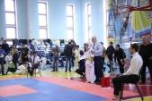 Фестиваль и открытое первенство Волжского по киокусинкай в дисциплинах кумитэ и ката (рис.14)