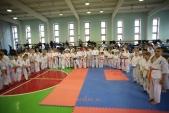 Фестиваль и открытое первенство Волжского по киокусинкай в дисциплинах кумитэ и ката (рис.28)