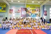 Фестиваль и открытое первенство Волжского по киокусинкай в дисциплинах кумитэ и ката (рис.33)