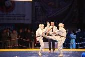 Чемпионат и Первенство ЮФО Киокусинкай 2018 Краснодар (рис.37)