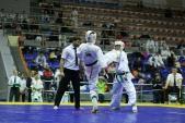 Чемпионат и Первенство ЮФО Киокусинкай 2018 Краснодар (рис.4)