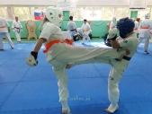 Аттестация на пояс киокусинкай карате и посвящение в каратисты май 2021 (рис.5)