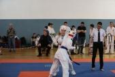 Чемпионат и Первенство Астраханской области по Киокусинкай (рис.17)
