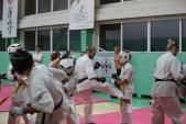 Дружеская боевая тренировка в Лицее 9  (рис.10)
