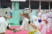 Дружеская боевая тренировка в Лицее 9  (рис.13)