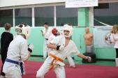 Дружеская боевая тренировка в Лицее 9  (рис.17)