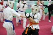 Дружеская боевая тренировка в Лицее 9  (рис.18)