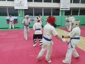 Дружеская боевая тренировка в Лицее 9  (рис.20)