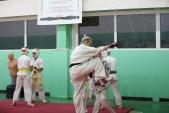Дружеская боевая тренировка в Лицее 9  (рис.4)
