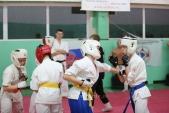 Дружеская боевая тренировка в Лицее 9  (рис.6)