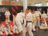 Мастер-класс под руководством Александра Ерёменко в городе Астрахань (рис.16)