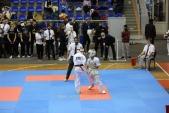 Всероссийские соревнования Кубок Черного моря по киокусинкай (рис.20)