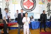 Спортивные состязания РОСО ВФК НОВИЧОК-2017 (рис.15)