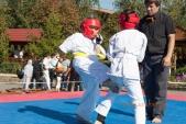 Учебные поединки по каратэ Киокушинкай-Лучший старт (рис.21)