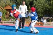 Учебные поединки по каратэ Киокушинкай-Лучший старт (рис.22)