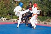 Учебные поединки по каратэ Киокушинкай-Лучший старт (рис.26)