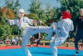 Учебные поединки по каратэ Киокушинкай-Лучший старт (рис.27)