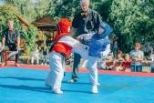 Учебные поединки по каратэ Киокушинкай-Лучший старт (рис.28)