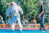 Учебные поединки по каратэ Киокушинкай-Лучший старт (рис.32)