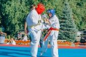 Учебные поединки по каратэ Киокушинкай-Лучший старт (рис.37)