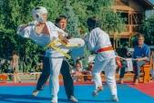 Учебные поединки по каратэ Киокушинкай-Лучший старт (рис.39)