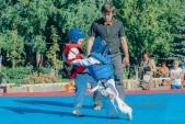 Учебные поединки по каратэ Киокушинкай-Лучший старт (рис.40)