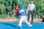 Учебные поединки по каратэ Киокушинкай-Лучший старт (рис.45)