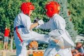 Учебные поединки по каратэ Киокушинкай-Лучший старт (рис.46)