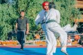 Учебные поединки по каратэ Киокушинкай-Лучший старт (рис.48)
