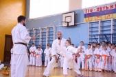 Кю-тест экзамен на пояс Волгоградской федерации киокусинкай каратэ 12 мая 2018 (рис.23)