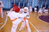 Кю-тест экзамен на пояс Волгоградской федерации киокусинкай каратэ 12 мая 2018 (рис.27)