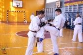 Кю-тест экзамен на пояс Волгоградской федерации киокусинкай каратэ 12 мая 2018 (рис.29)