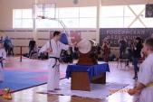 Открытые соревнования Волгоградской области по Киокусинкай МОЛОДОЕ ПОКОЛЕНИЕ-2017  (рис.25)