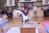 Открытые соревнования Волгоградской области по Киокусинкай МОЛОДОЕ ПОКОЛЕНИЕ-2017  (рис.29)